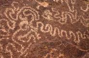 Petroglyph panel