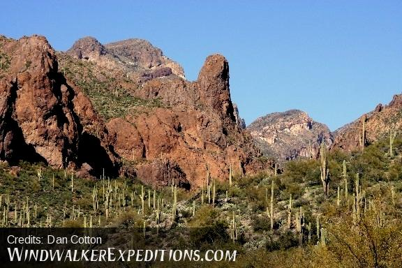 A scenic view of saguaro cacti and prickley pear cacti with mountains and sky