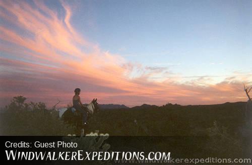 Desert Sunset on Horseback